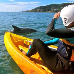 Byron Kayaking