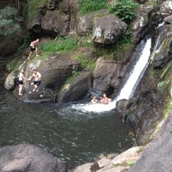 Byron Tours Minyon Falls