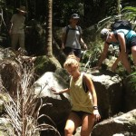 ByronToursRainforestWalk