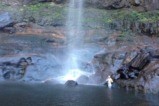 Byron Tours Waterfall Swimming