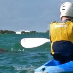 Kayaking Byron Bay