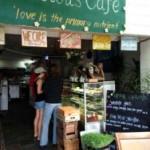 The-Conscious-Cafe-2-224x300