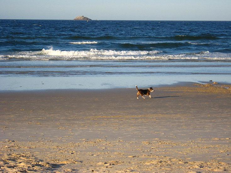 Feature-Byron-Bay-Beaches-2