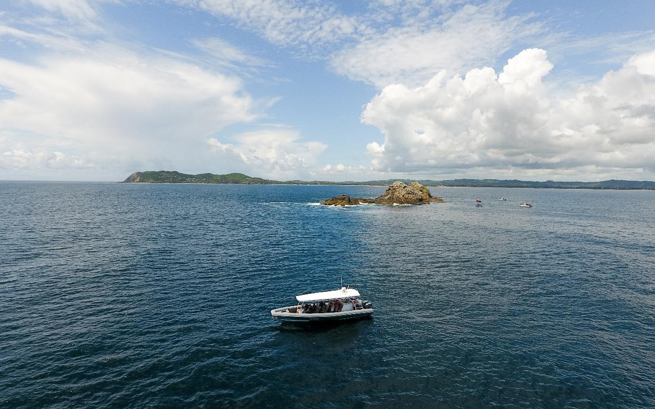 Byron-Marine-Park-Eco-Cruise-2
