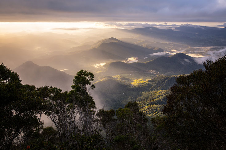 20 Photos that will Make you Want to Visit the Byron Hinterland 18
