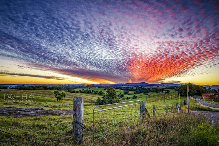 20 Photos that will Make you Want to Visit the Byron Hinterland 7